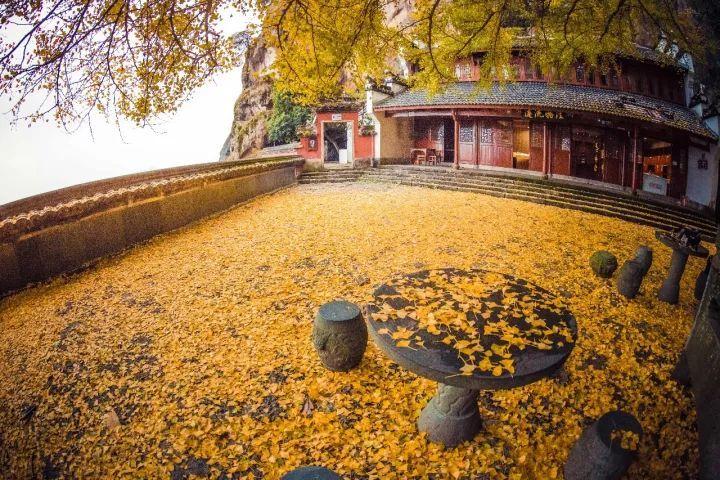 杭州市内包车网_杭州旅游建德的秋天